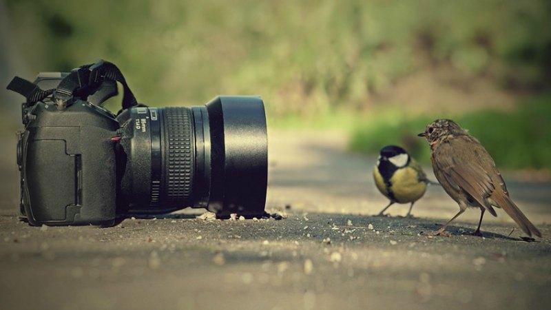 camera-store-3