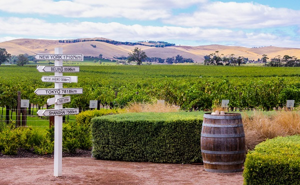 Barossa Wine Region
