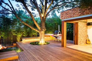 trees Melbourne