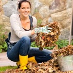 Autumn Garden Cleaning