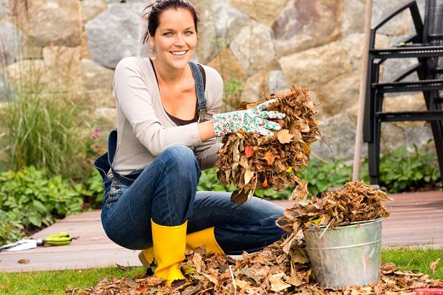Autumn Garden Cleaning