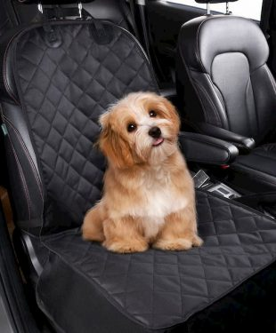 little dog on a cover seat for cars