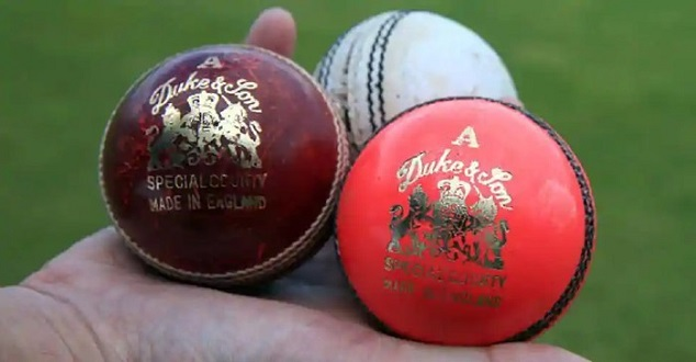 Types-of-cricket-balls